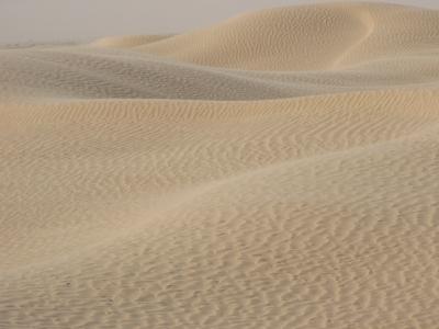 sable.jpg
