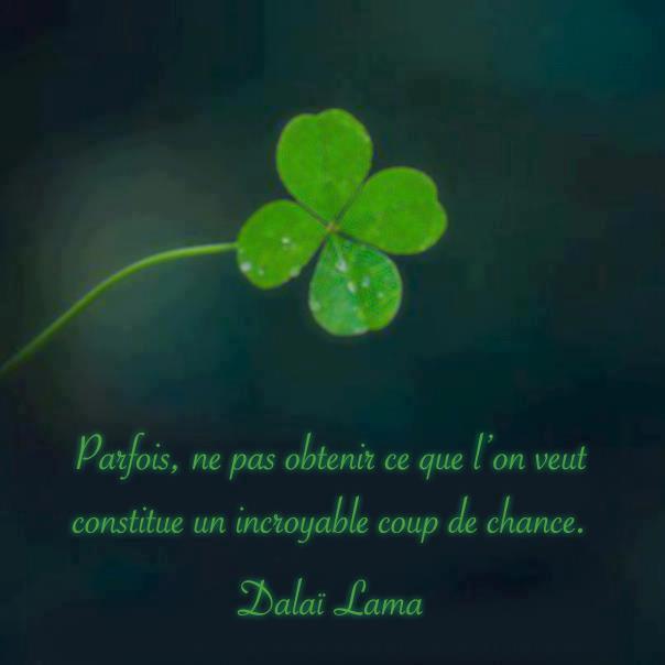 Coup De Chance un incroyable coup de chance… · la vie est trop courte pour être petite…