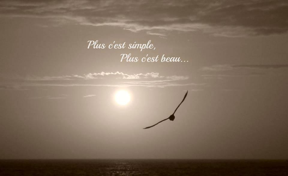 Ou l loge de la simplicit la vie est trop courte pour tre petite - Salon simple et beau ...