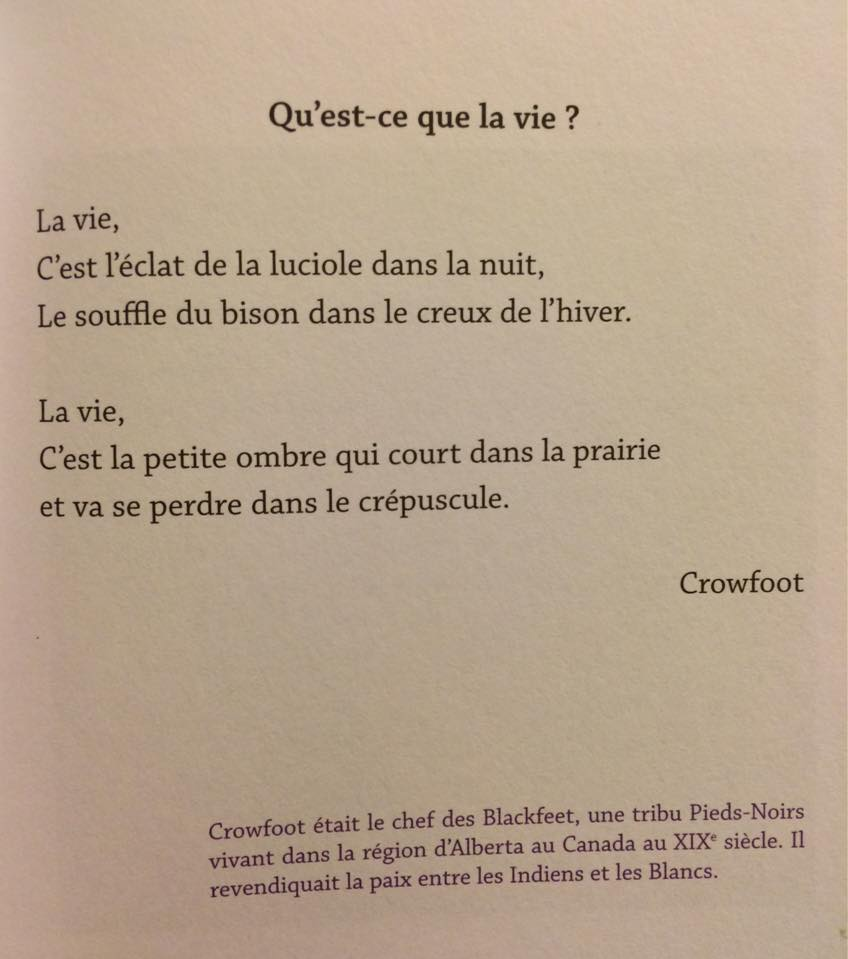LA VIE SELON CROWFOOT