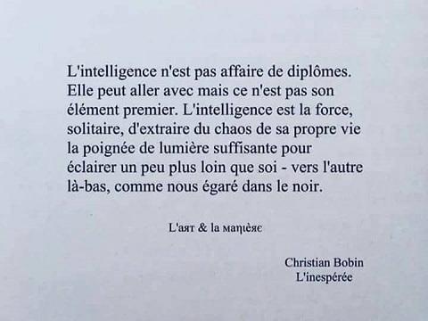 INTELLIGENCE-CHR-BOBIN