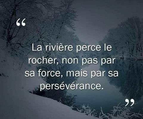 PERSEVERANCE-