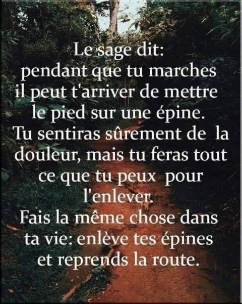 LE SAGE DIT